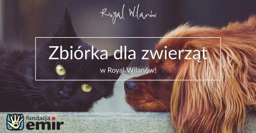 Zbiórka dla zwierząt w Royal Wilanów