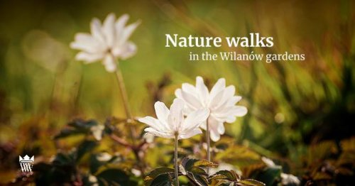 Nature walks in the Wilanów gardens